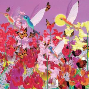 dancing butterflies with birds gabriella eva nagy